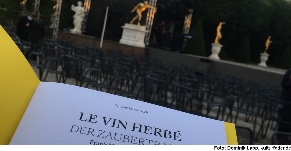 """Le vin herbé"" (Foto: Dominik Lapp)"